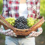 grožđe