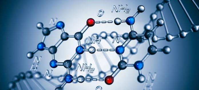regenerativna medicina