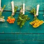 biljni lek