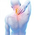 Bol u leđima i sport