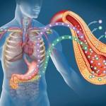 Dijabetes, svetski problem