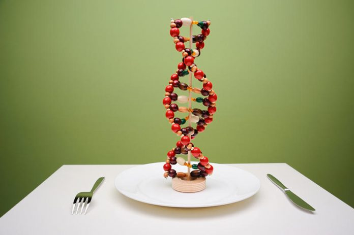 geni i gojaznost