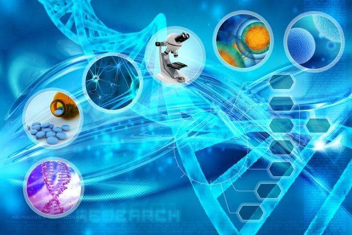 razvoj i nastanak karcinoma