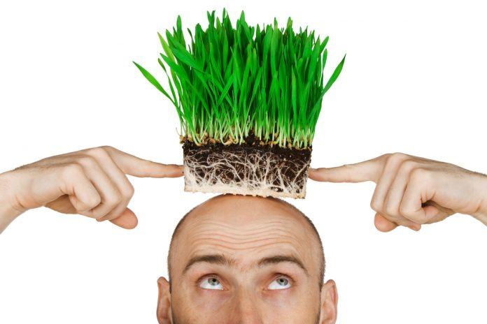 opadanje kose kod muškaraca