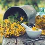 kantarionovo ulje