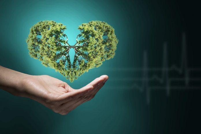 plucna hipertenzija